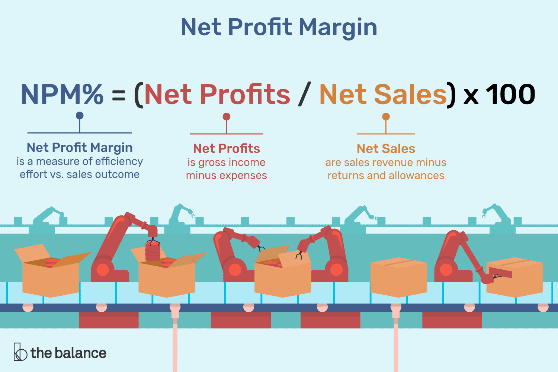 Formula for Net Profit Margin