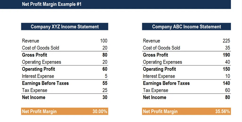 Net Profit Margin Example