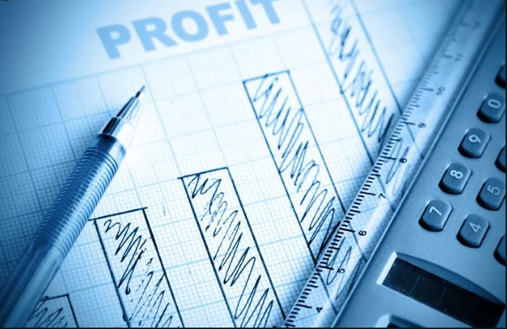 Net Profit Measure