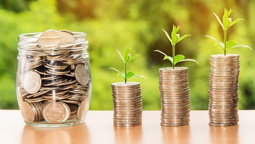 Grow your Net Profit