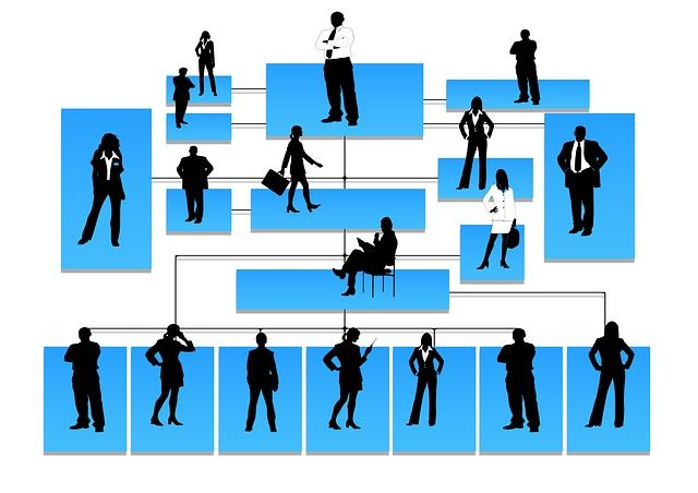 Detailing your Management and Organization