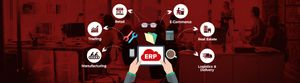 Cloud ERP: a must have software for every organization